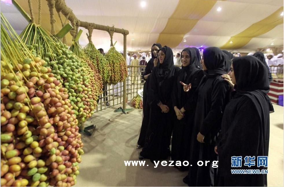 阿联酋第九届利瓦椰枣节